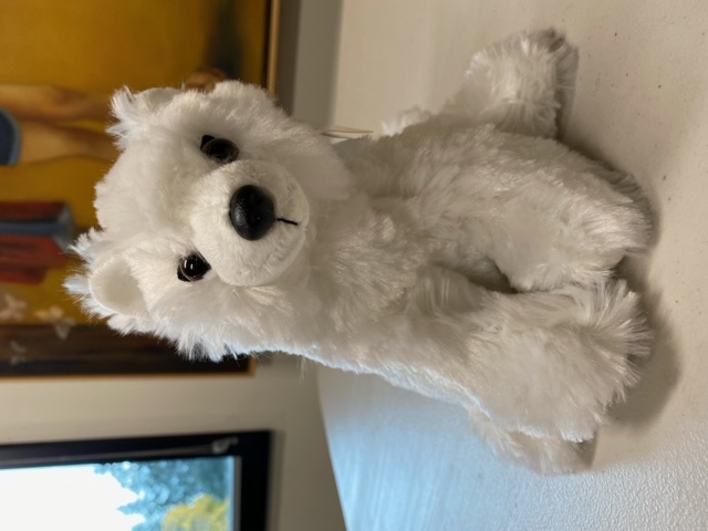 Arctic Fox - Plush Animal