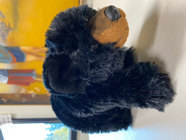 Black Bear Cub - Plush