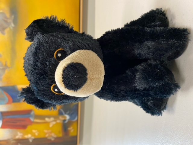Black Bear - Plush