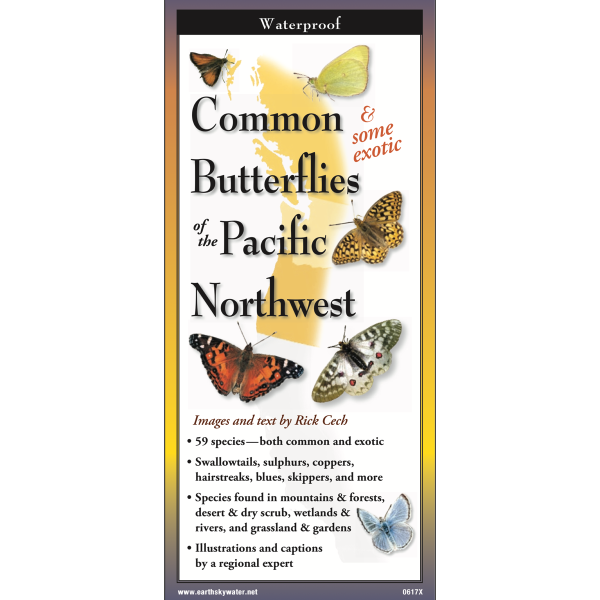 Common Butterflies of the Pacific Northwest