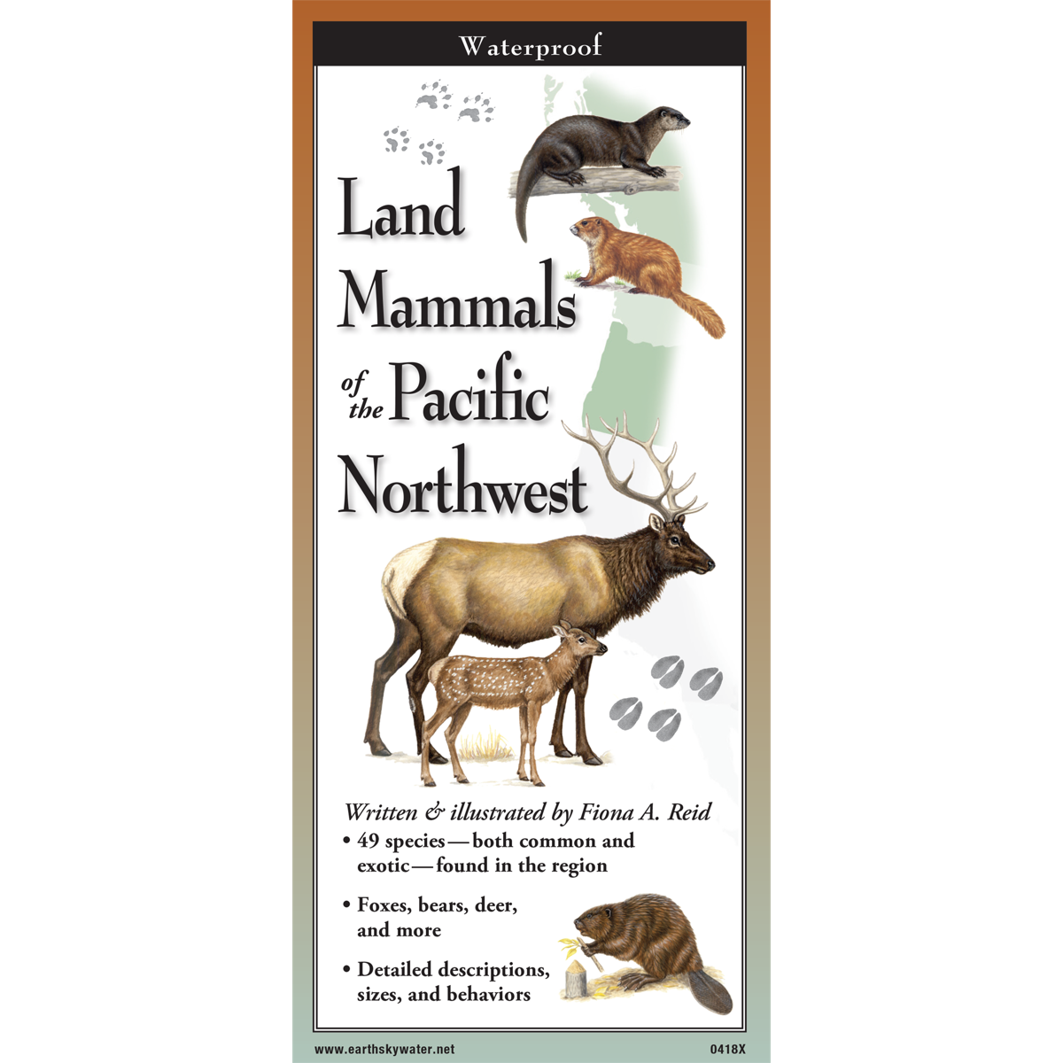 Land Mammals of the Pacific Northwest