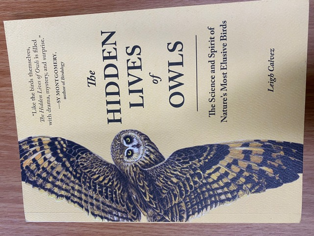 The Hidden Lives of Owls - Front Cover